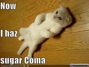 sugar-coma