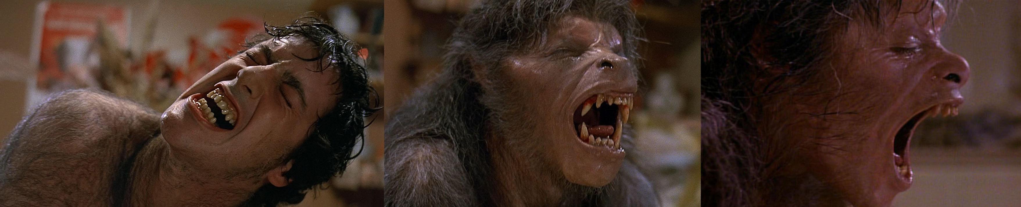 an-american-werewolf-in-london-banner-poster