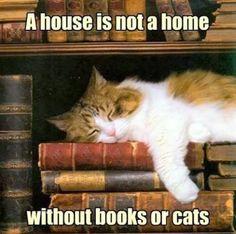 bks+cats