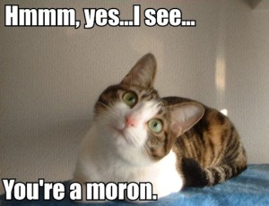 hmm_yes_i_see_youre_a_moron_trollcat