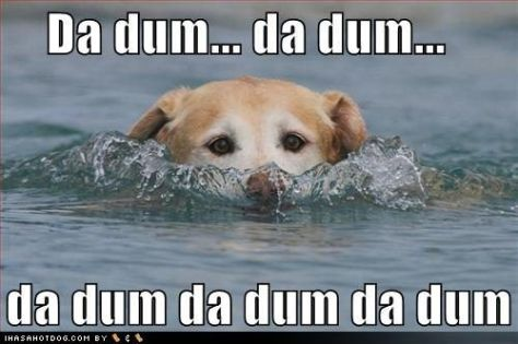 da dum Jaws