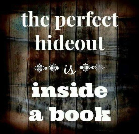 PerfectHideoutaBook