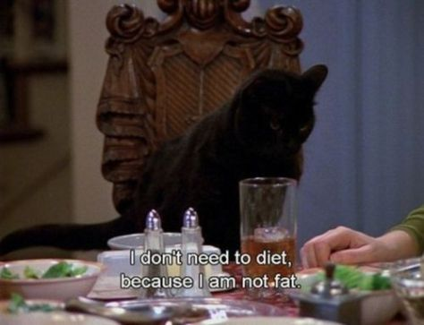 dietntfatSabrina the teenage witch