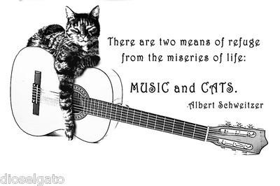 catsmusic