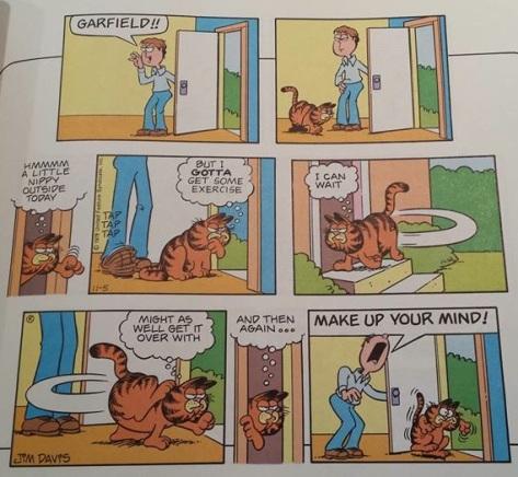 GarfieldCatGoinandOut