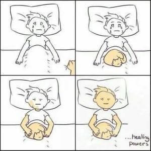kittylovecat